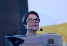 Tereza Cristina Ministra da Agricultura