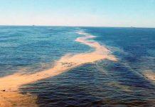 odebateon-bacia-de campos-offshore
