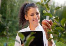 Dia Mundial da Agronomia chama atenção para as práticas sustentável
